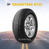 GRANDTREK AT22