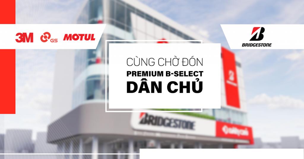 premium-b-select-dan-chu